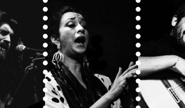 Sala BBK Flamenco Viene